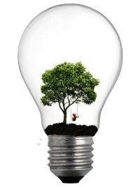 Tree Lightbulb : Pawnile | new subject matter | Pinterest ...