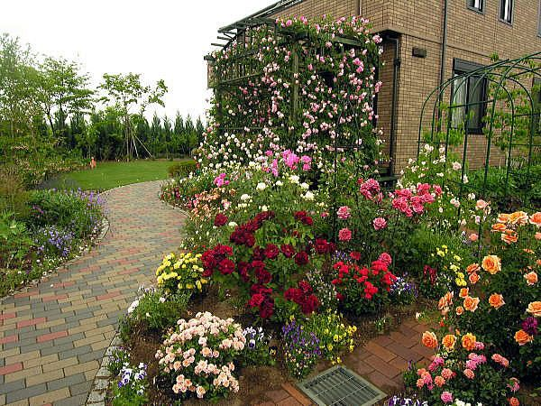Nice Rose Garden Design Garden Design #10