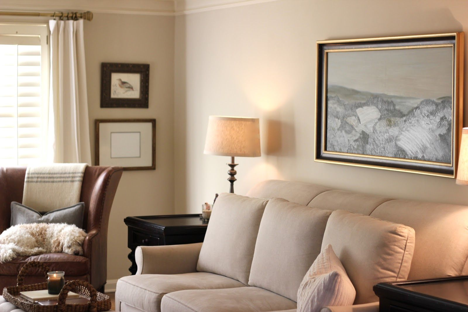 Living Room. Modest Living Room Paint Colors With Beige