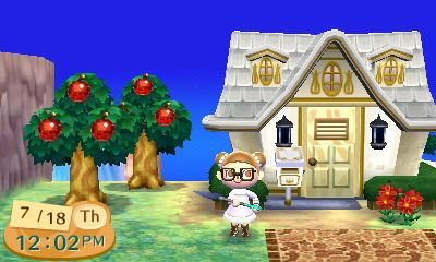 Animal Crossing New Leaf 40 000 Point House Animal Crossing And