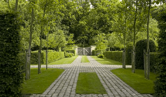 Beautiful Driveway Cobblestone And Grass Garden And Landscaping