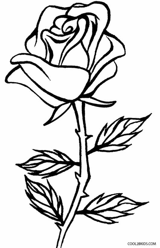 rose coloring pages   Coloring Page for kids