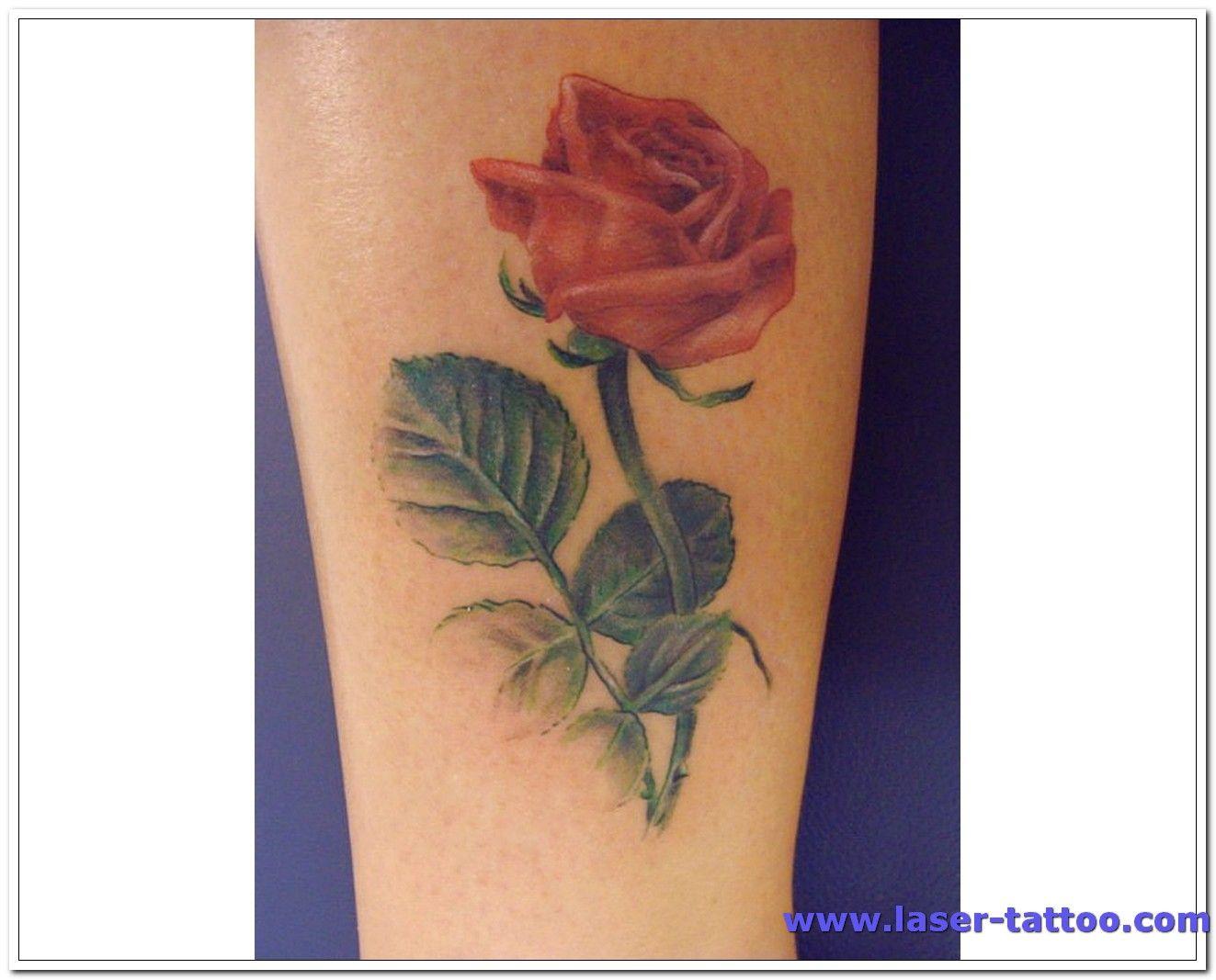 Rose Tattoos For Girls  Rose Tattoo Designs For Girls Leg