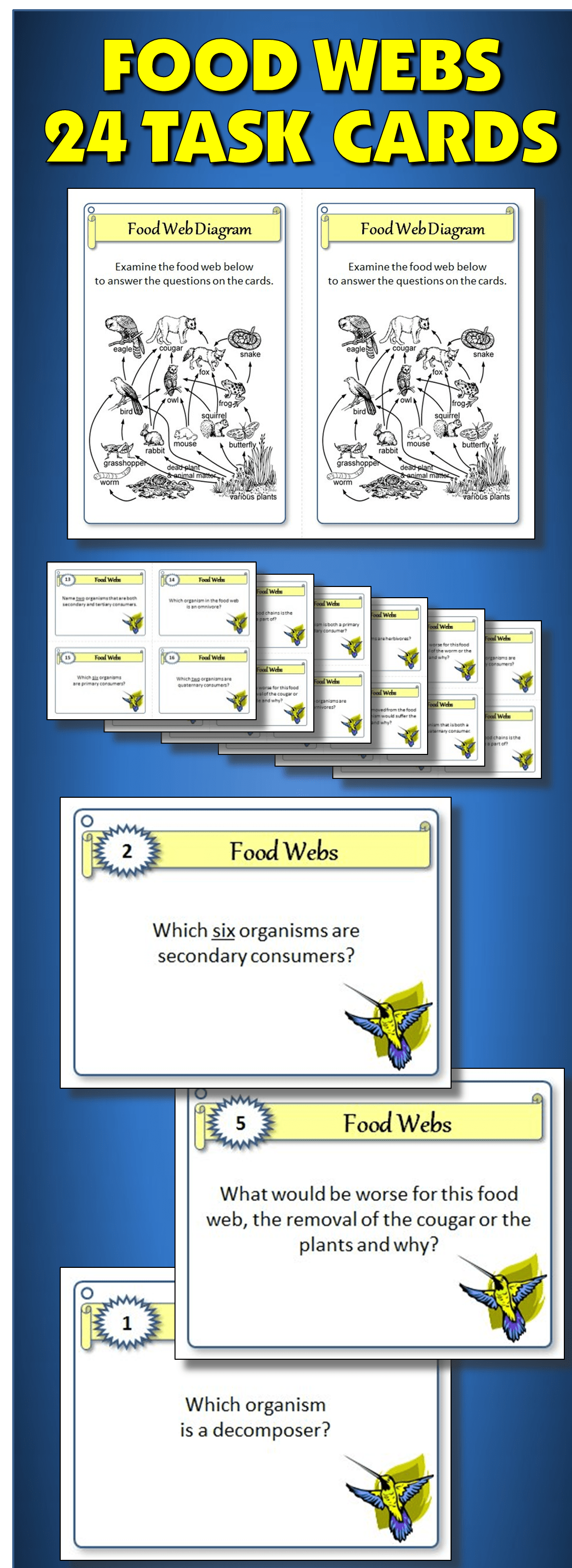 Food Webs Task Cards With Editable Template