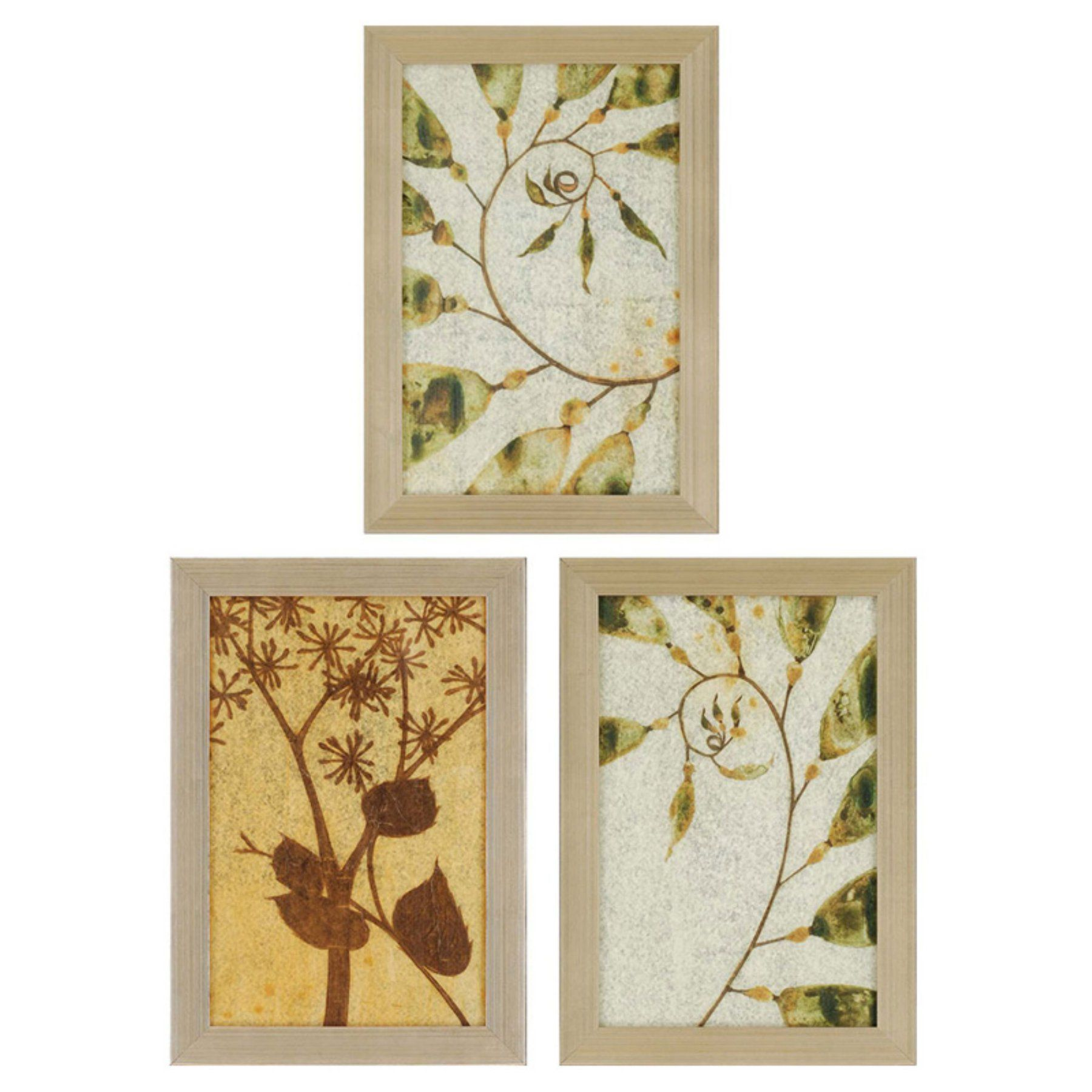 Paragon decor nature study ii by jardine set of wall art also rh pinterest