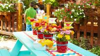 Summer Picnic Decorating Ideas | Picnic table with ...