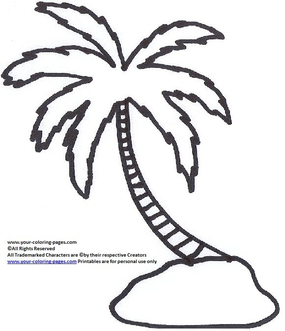 Palm Tree Coloring Pages Nature