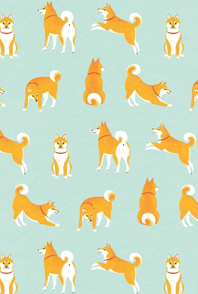 Shiba Inu Cute Desktop Wallpaper Find More At Http Www Pinterest Com Competing Dog Art