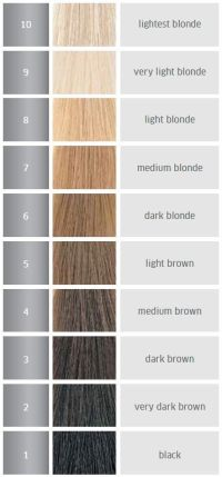 The hair levels | Hair Levels | Pinterest | Hair coloring ...