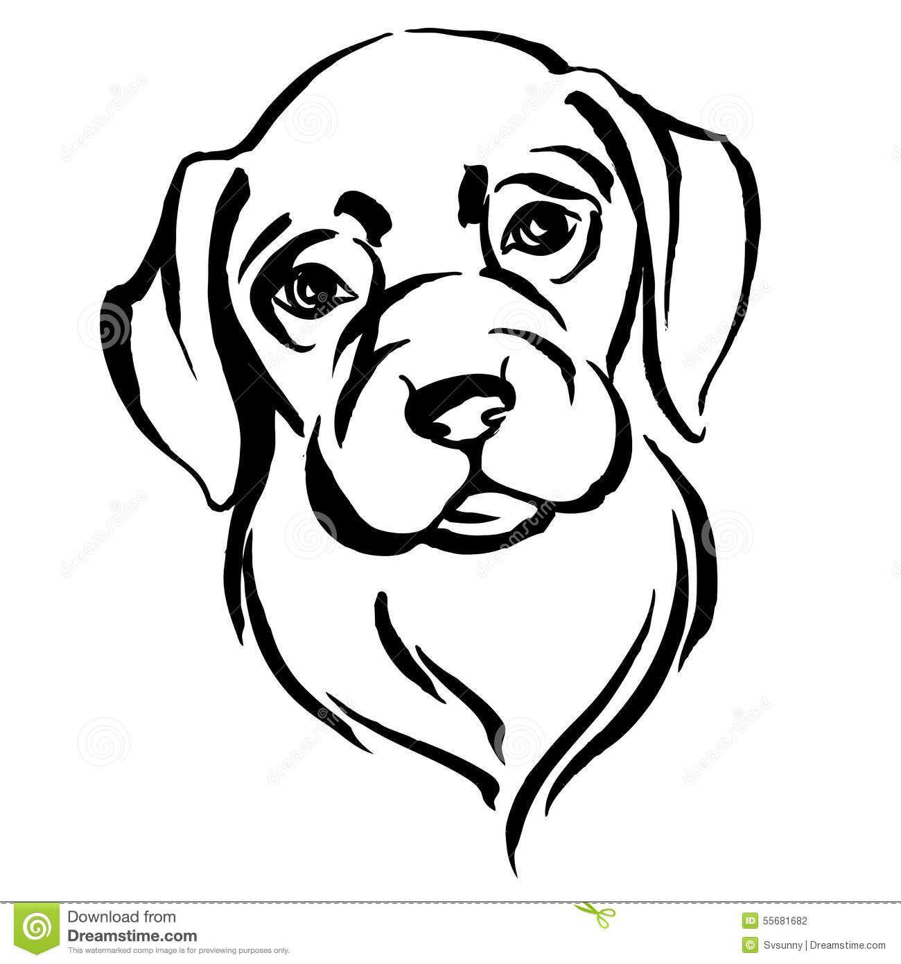 Malvorlage Labrador