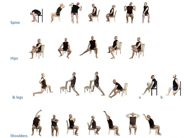 Chair stretching exercises YESnoFITNESS  YESnoFITNESScom