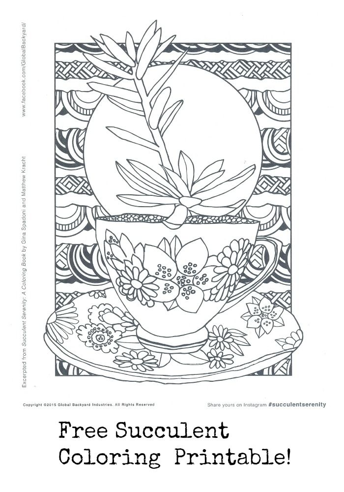 Free coloring page from the new coloring book Succulent