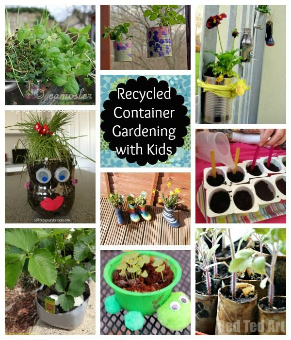 Recycled Container Gardening With Kids Gardens Creative And