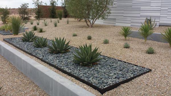 modern desert landscaping los