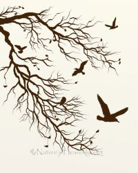 Bare Tree Branch 8 x 10 Print, Flying Birds, Nature Wall