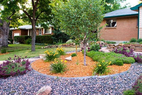 xeriscape landscaping . of