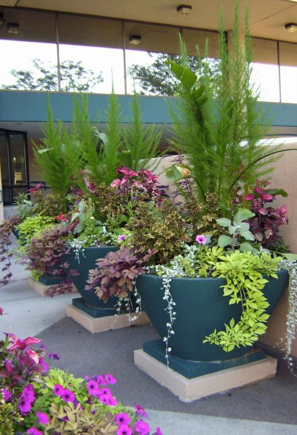 Container Garden Ideas Back Yard Designs Landscaping Ideas Small