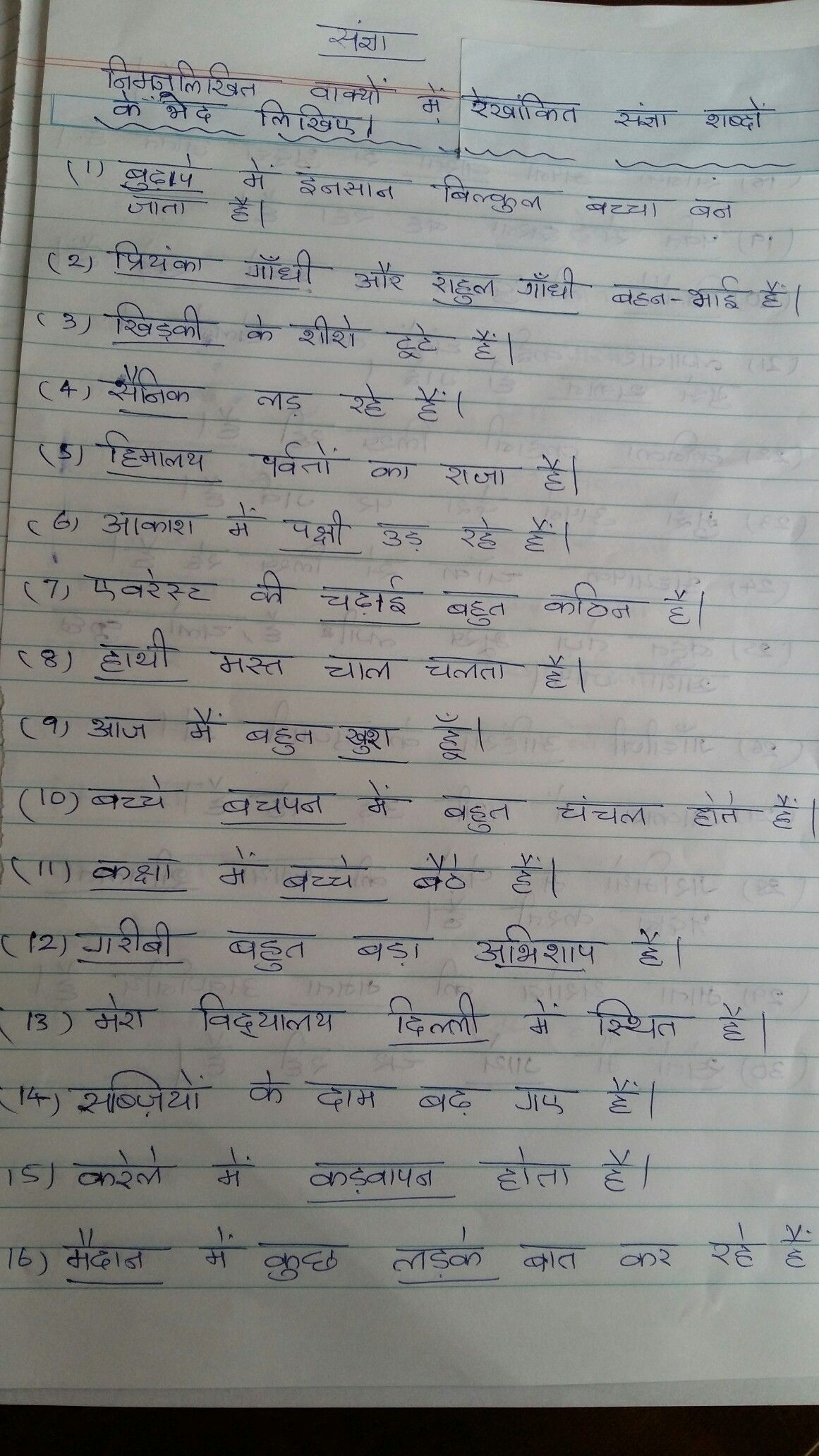Worksheet Hindi Grammar