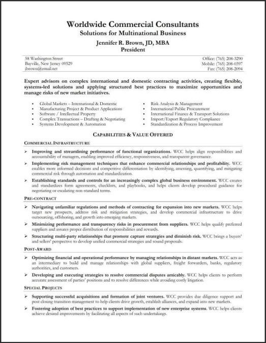 Executive Summary Example Resume Professional Resume Summary