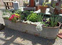 Container Gardens Ideas Unique Gardening