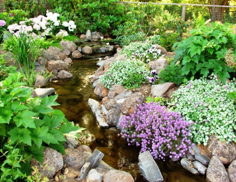 Landscaping Ideas > Garden Design > Pictures Backyard Stream