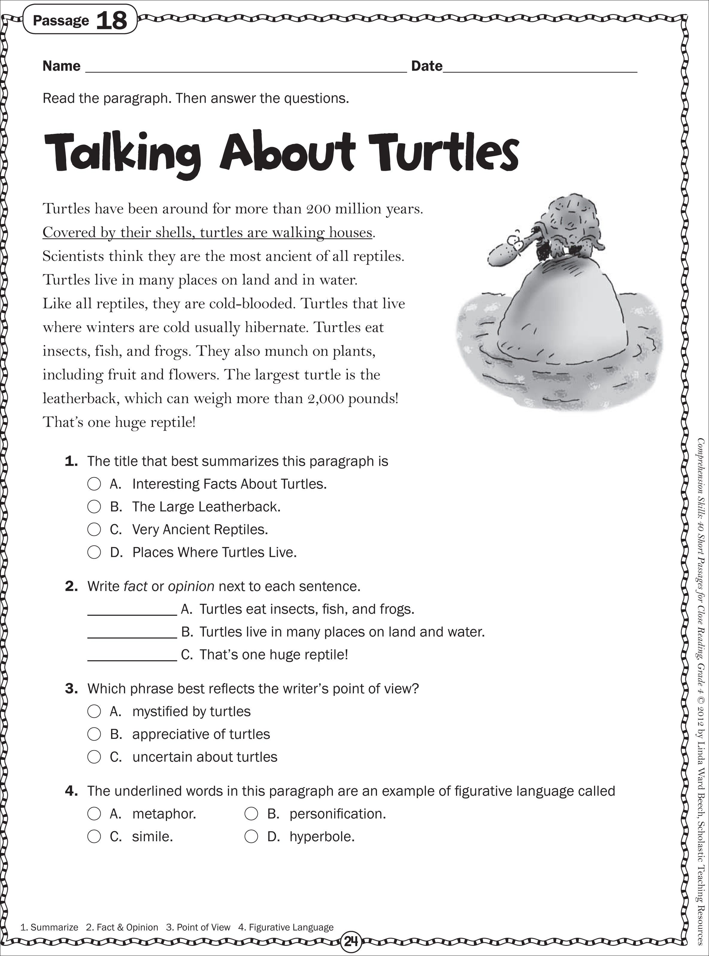 Turtle Non Fiction Passage