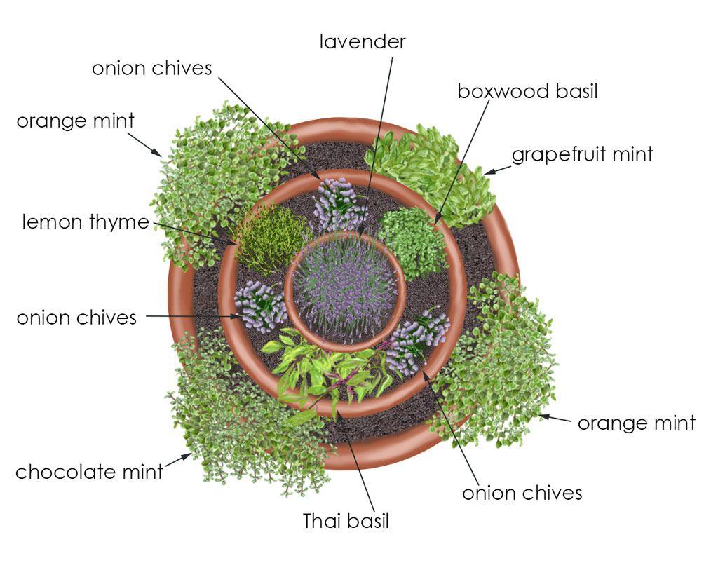 Pflanzplan Kräuter Im Topfturm DIY Ideen Pinterest Gardens