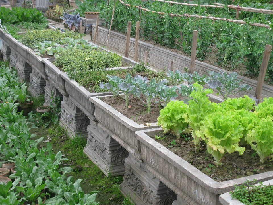 30 Best Images About Potager On Pinterest Gardens Raised Beds