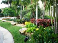 Wow, what a lush landscape! I love it! Florida landscaping ...