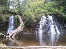 Cherry Creek Falls Duvall WA