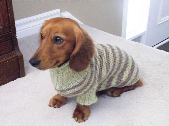 Dog Sweater Pattern Round Knitting Loom