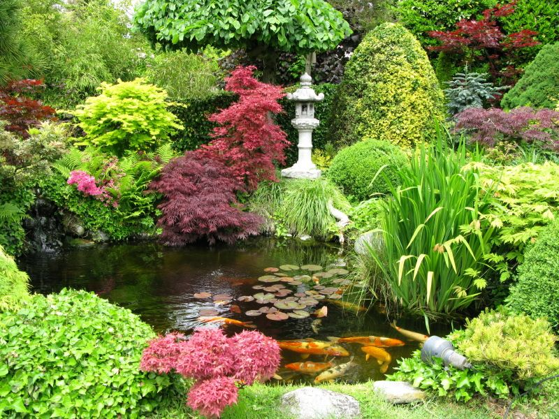 Japanese Garden I Have A Pond In My Back Yard With Gold Fish But