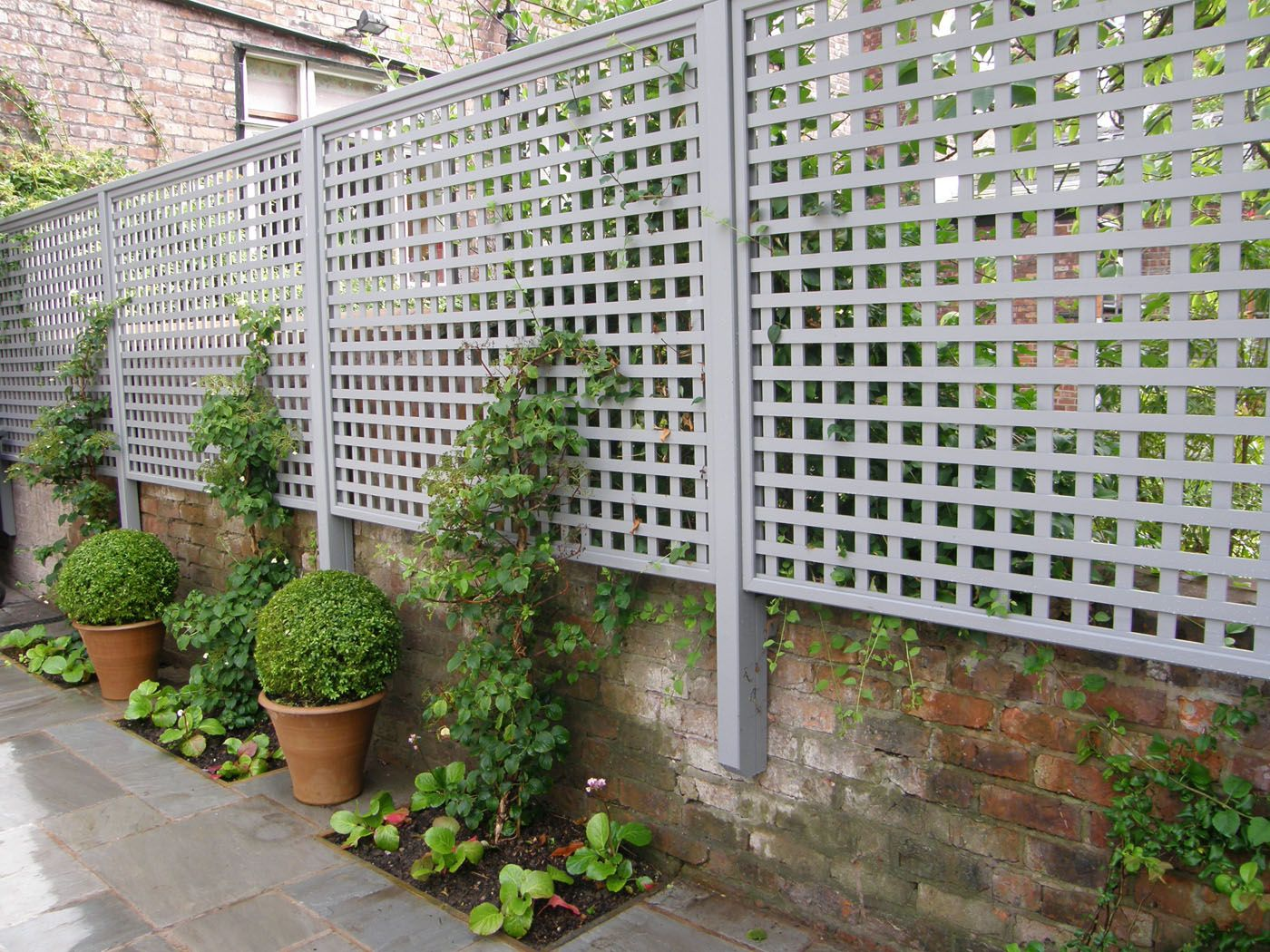25 Best Ideas About Metal Garden Trellis On Pinterest Metal