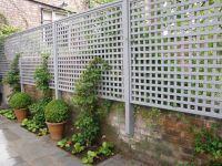 Creative Uses for Garden Trellises | Greenery, Dwarf and ...
