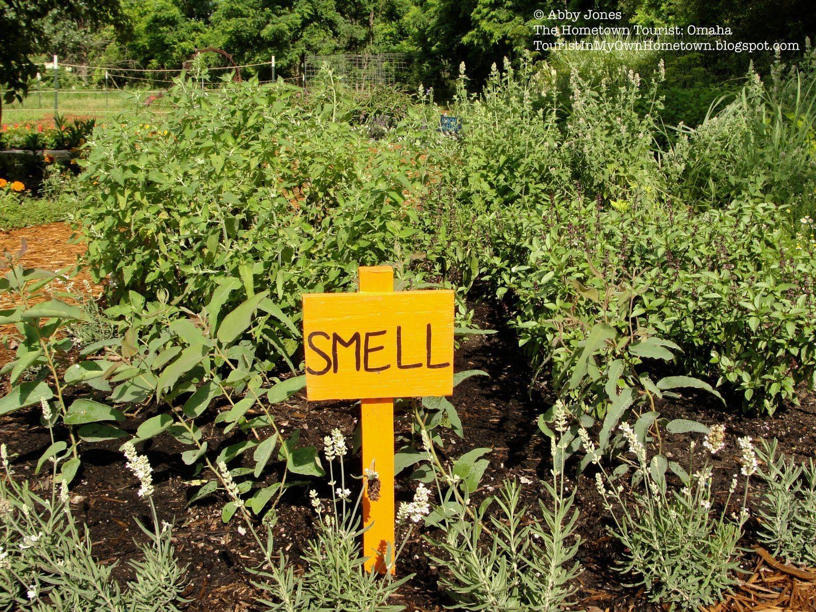 Children S Garden Ideas The Cabin In The Childrens Garden Appeals
