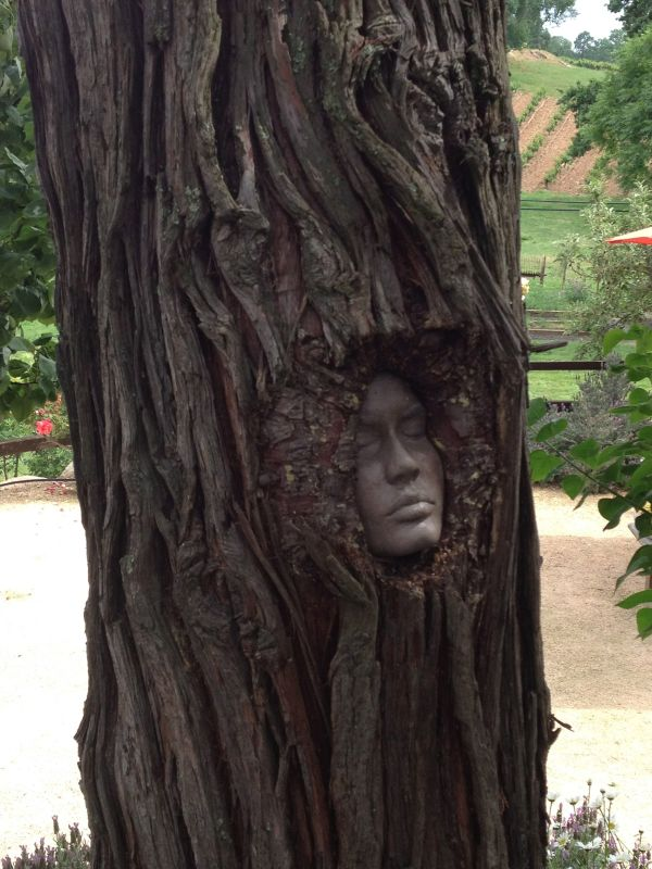 Artist Young' Vinyard Put Faces Tree Knots Fun Unknowingly Discover
