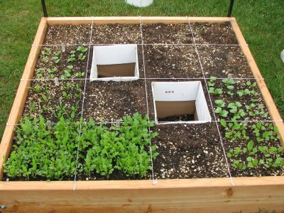 "Square Foot Gardening ""50 Of The Cost 20 Of The Space 10 Of"