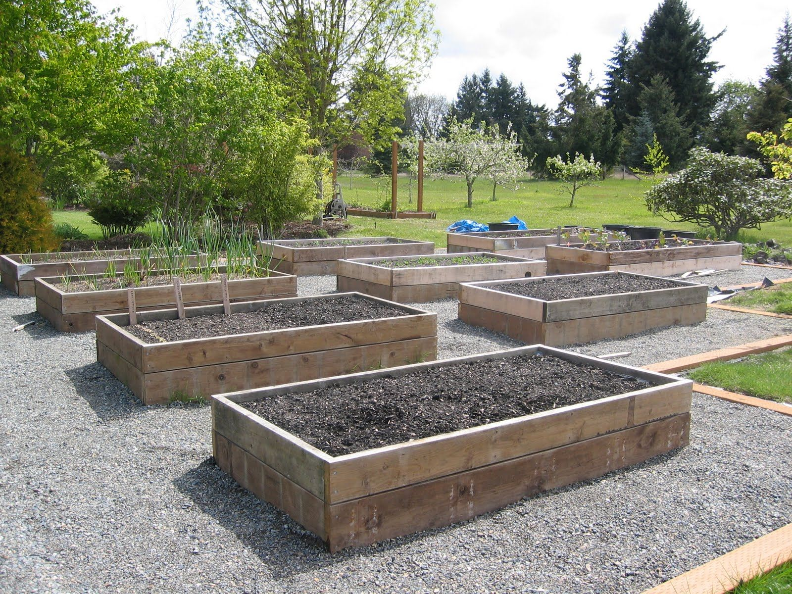 Raised Vegetable Garden Ideas How To Build Raised Vegetable