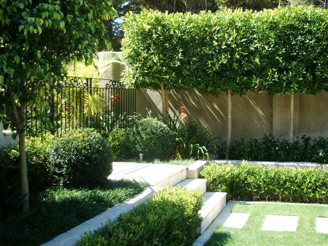 Landscape Garden Design Ideas Landscaping Idea Gardens Auckland