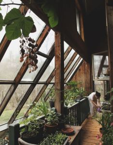 Green houses also pin by nina livadap on dream house pinterest gardens plants and rh