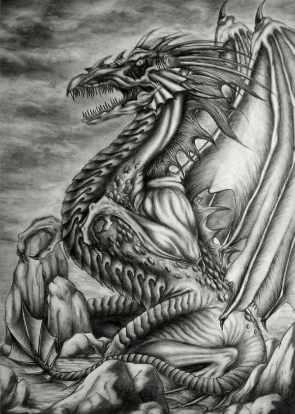 Excellent Pencil Drawings Of Dragon  Pencil Drawings Of