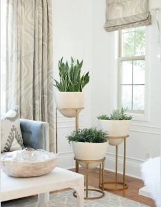Decorate empty corners in your home creatively also greenery rh pinterest