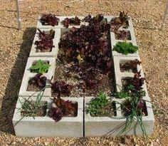 Diy Garden Ideas On A Budget Google Search House Ideas