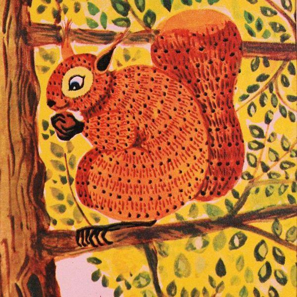 25 Squirrel Illustration Ideas Acorn