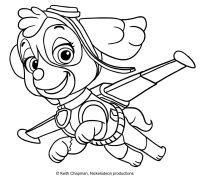 Disegno da colorare di Skye - Paw Patrol | cumple dai ...