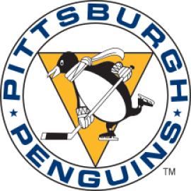 Image result for pittsburgh penguins logo