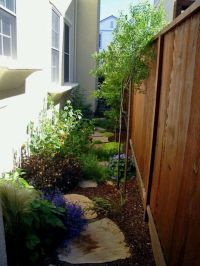 Good choice of plants and plant placement for side yard or