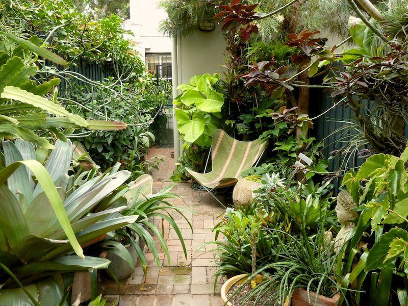 Peter Nixon's Sydney Subtropical Courtyard Garden Gardens