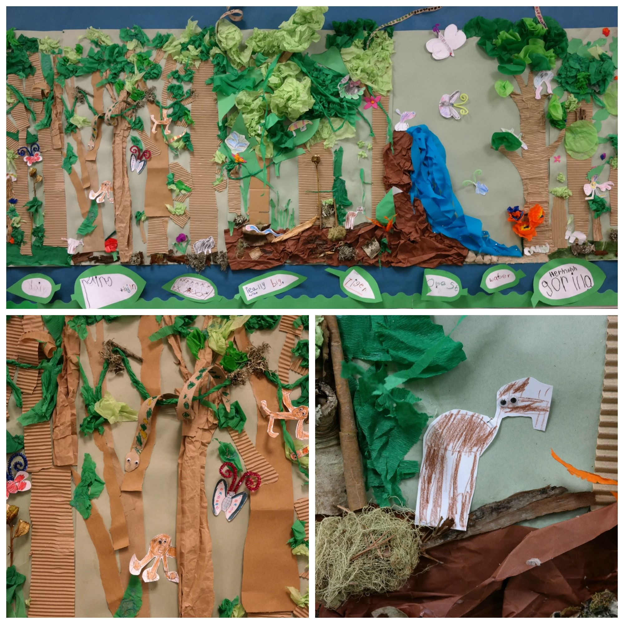 This Was Our Rainforest Collage That Our Class Made For