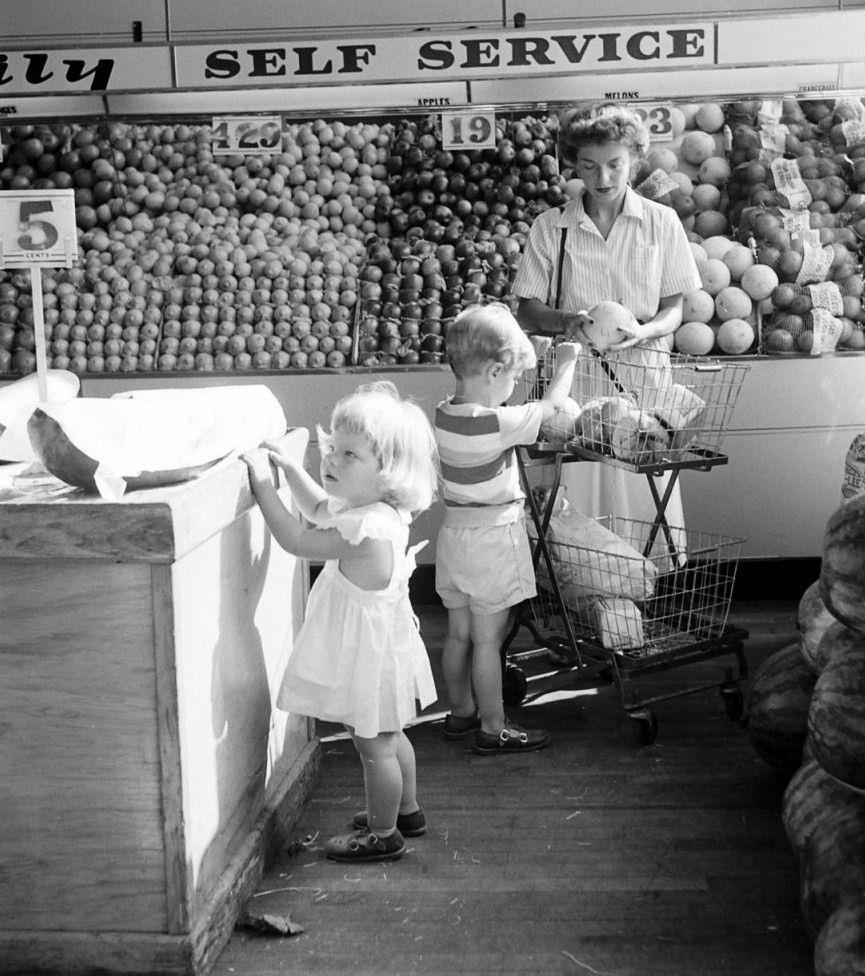 Shopping Children Carts Toy